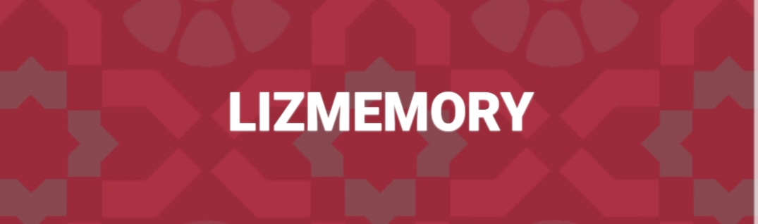 LIZMEMORY FASHION